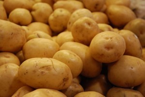 Potato Powered Batteries